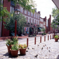 Brick buildings along a cobblestone road filled with trees and flowers